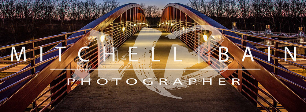 Mitchell Bain Photography